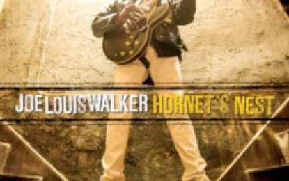 Joe Louis Walker :: HORNET'S NEST