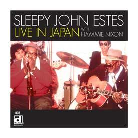 Sleepy John Estes