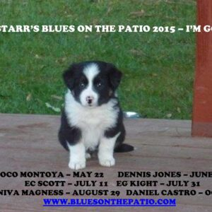 Val Starr's Blues On The Patio