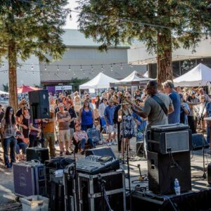 Sonoma County Blues and Arts Festival