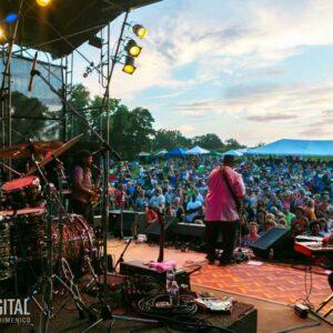 Briggs Farm Blues Festival
