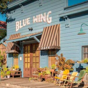Blue Wing Blues Festival