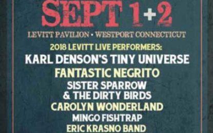 11th Blues Views & BBQ Festival in Westport This Weekend