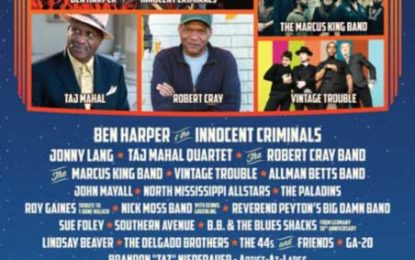 Doheny Blues Returns to Sea Terrace Park in 2019