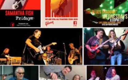 Great Samples of Live Blues Streams Online